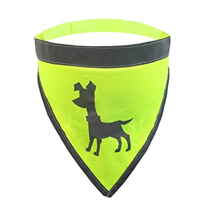 Alcott Essentials Visibility Dog Bandana