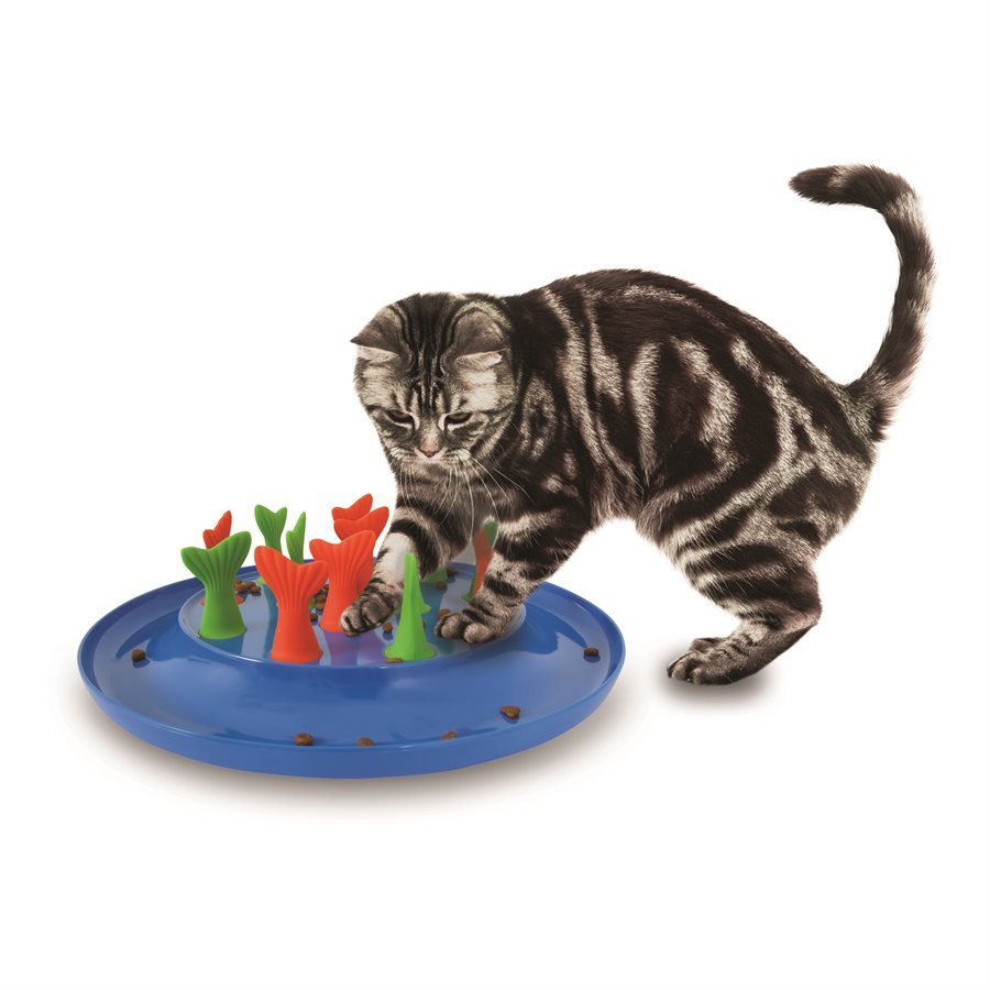 Petmate Jackson Galaxy Go Fish Puzzle Toy