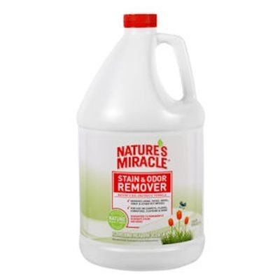 NM Stain/Odor Remover (Meadow) Gallon