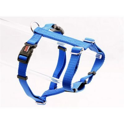 "Reflex Behave Harness 3/4"" Royal"